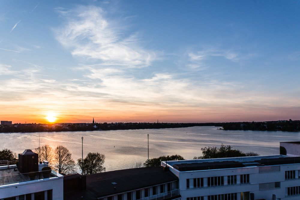 Hamburg wo genau kirschblütenfest Zecken