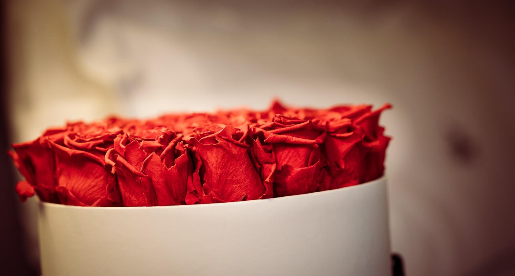 Happy Valentine S Day Ein The George Tag Fur Zwei